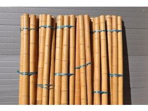 Bambusová tyč průměr 7-9 cm a délka 4 metry