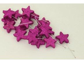 Vánoční hvězdička fialová. Cena za 1 polybag (20ks)