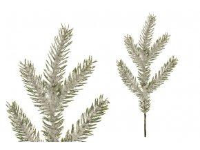 Větev