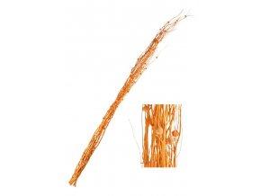 Přírodní materiál - větve, svazek 10ks