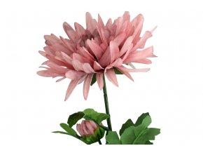 Chryzantéma, barva světle filová. Květina umělá.