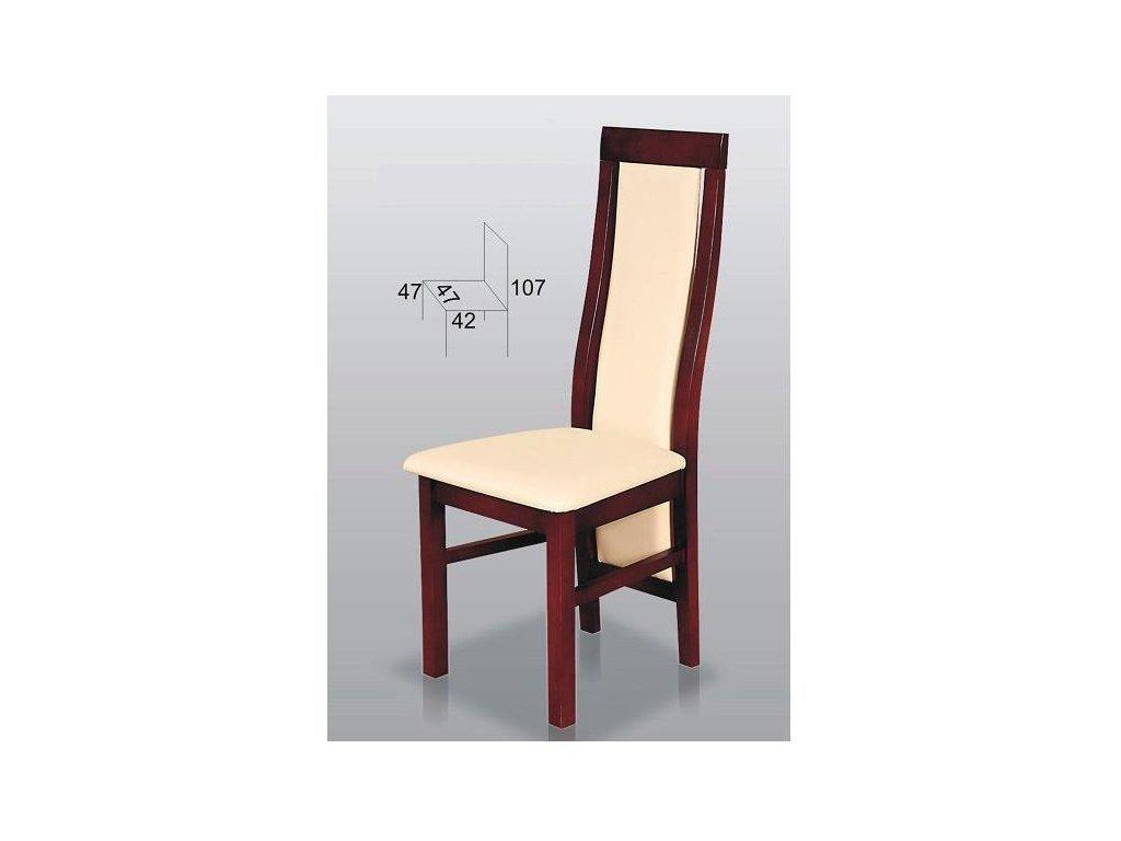 Jídelní židle Dynyt B42