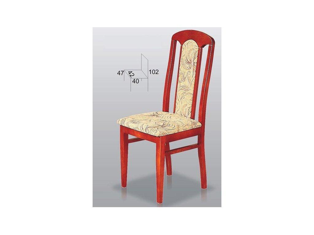 Jídelní židle Hapys B9
