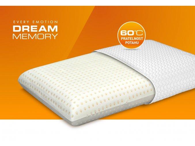 DreamMemory BIG[1]