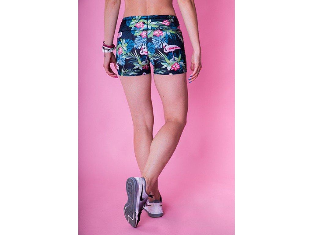 Fitness šortky dámské 2skin Best Flamingo - nacvico.cz db0b6d3a0c