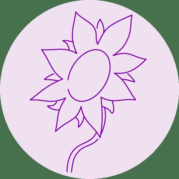 Slunečnice_Ver.5