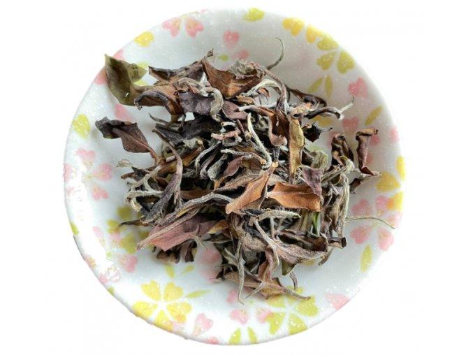 jin xuan white tea