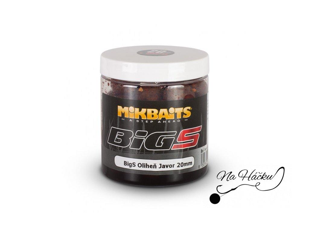 Mikbaits boilie v dipu BIG BigS - 250 ml