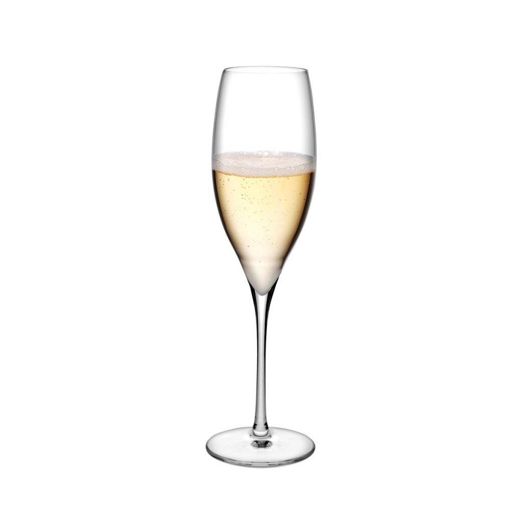 Terroir Set of 2 Champagne Glasses 2