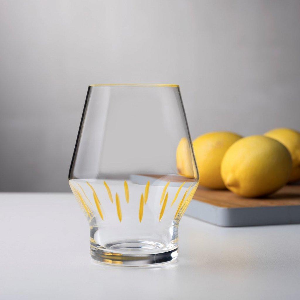 BEAK 2 GLASSES IRIS APFEL 3