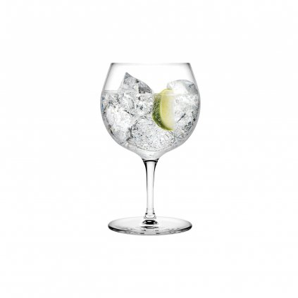 Vintage Set of 2 Gin Tonic Glasses