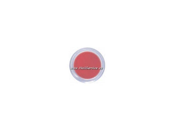 ACRYL COLOR POWDER- Pure Red 5g ČERVENÝ