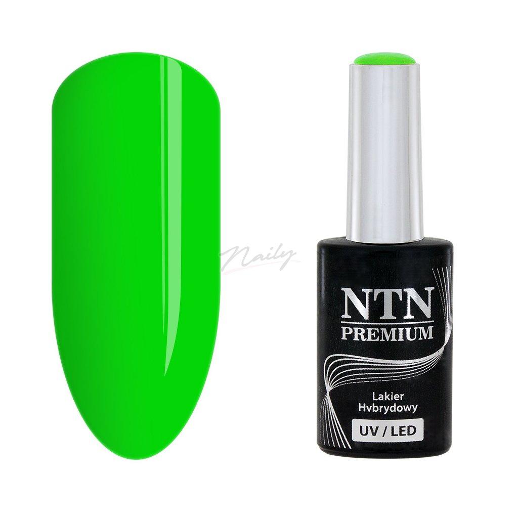 Gél lak na nechty NTN Premium 146