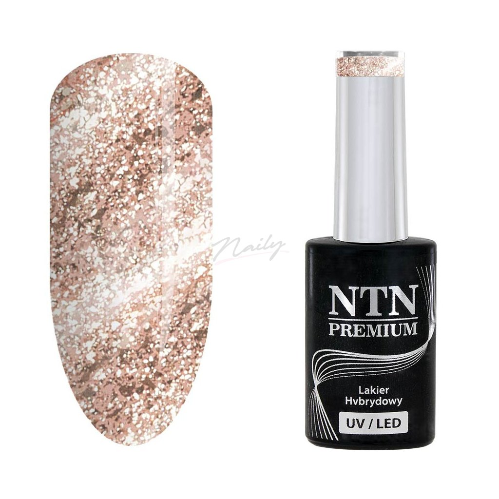 Gél lak na nechty NTN Premium 169