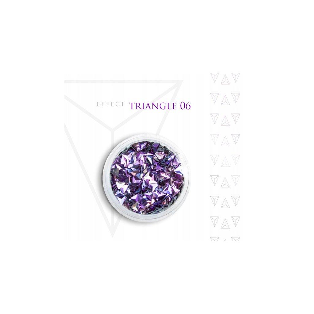 triangle 06