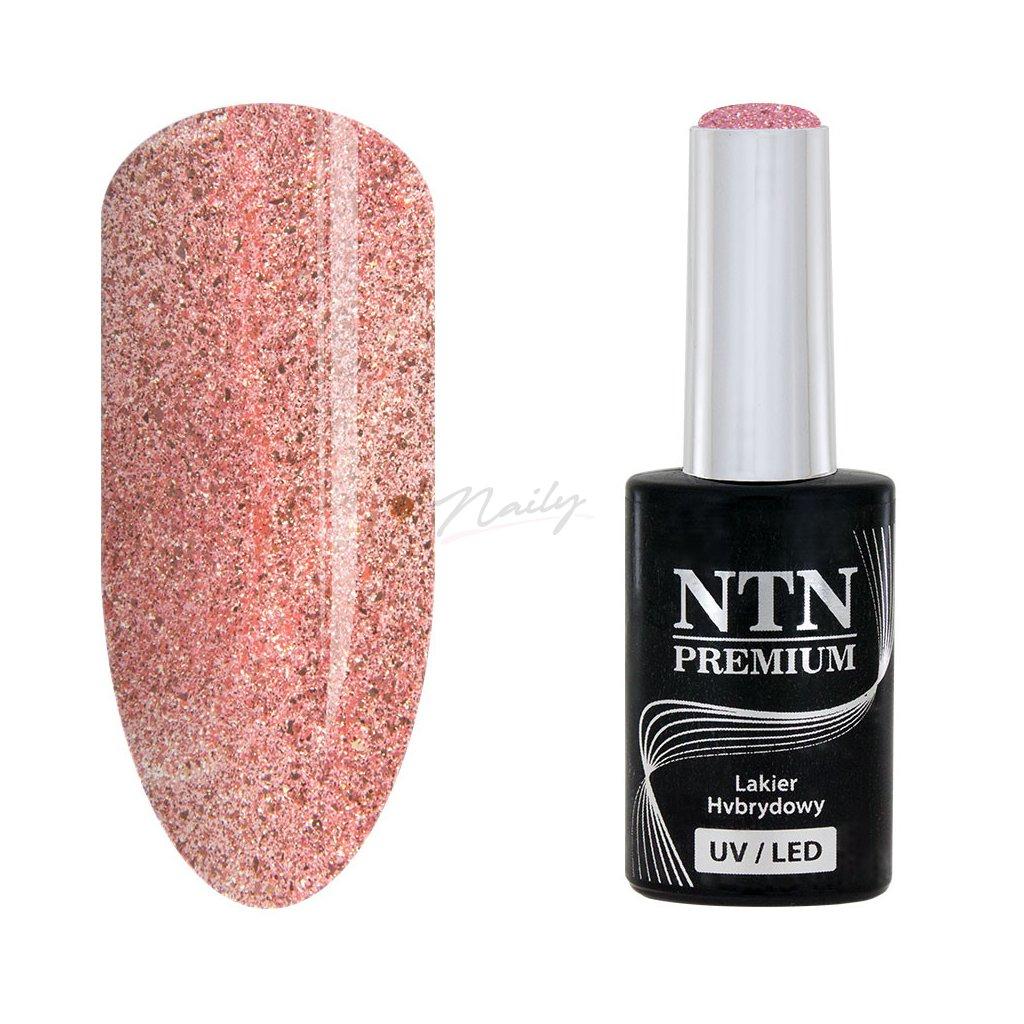 Gél lak NTN Premium nr 107