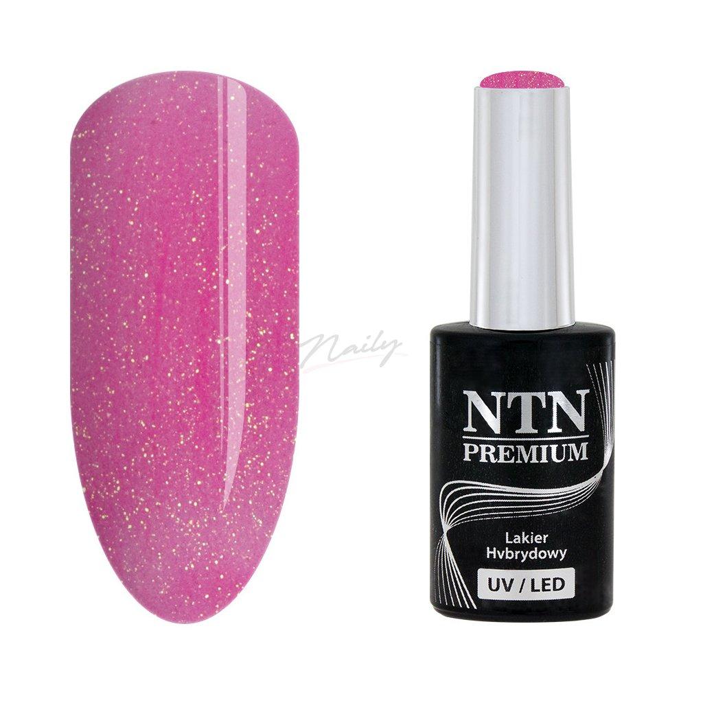 Gél lak NTN Premium nr 51