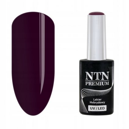 Gél lak na nechty NTN Premium 132
