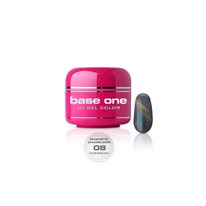 base one magnetic chameleon 08 caribbean