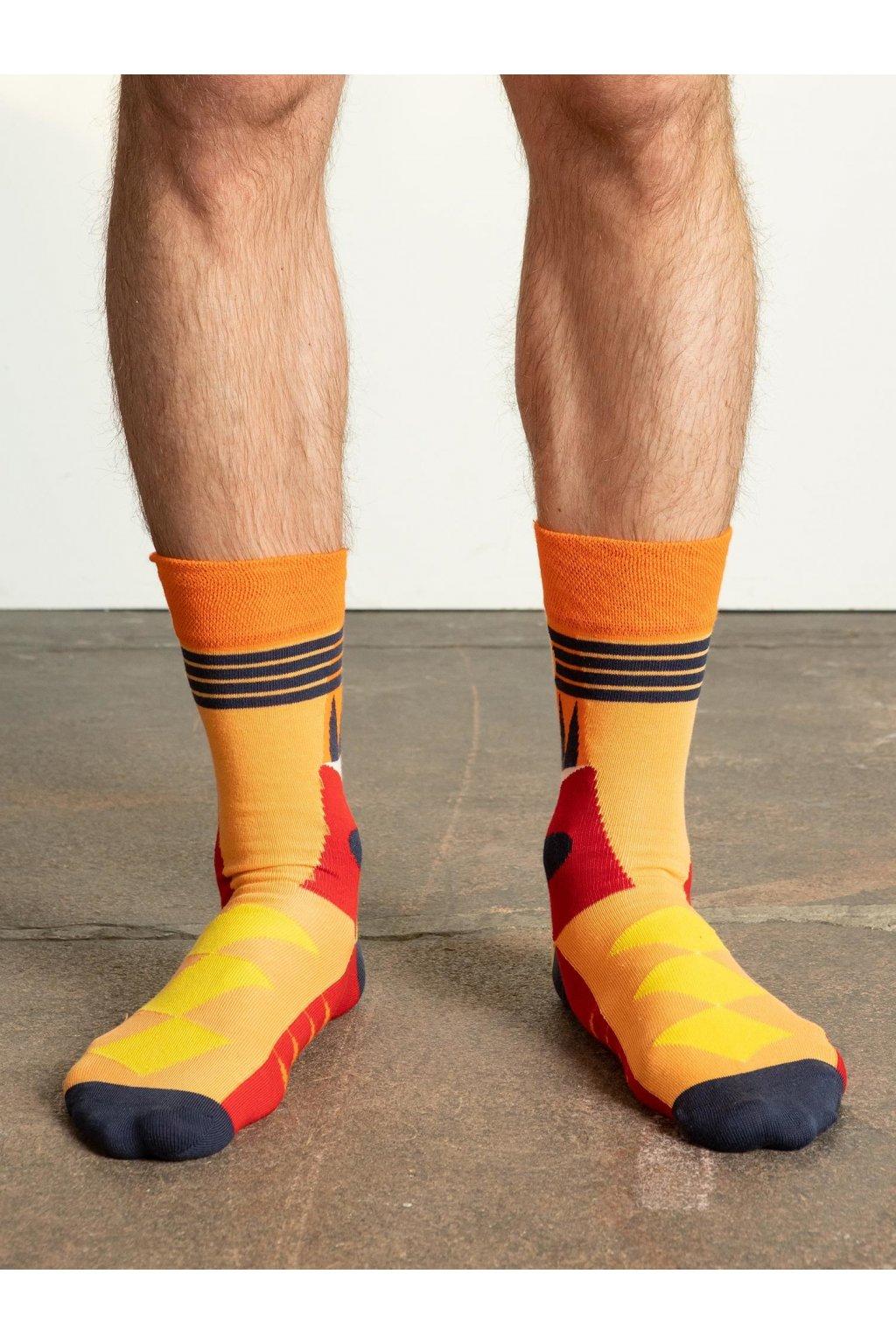 Pánske ponožky kód WS-SR-5175