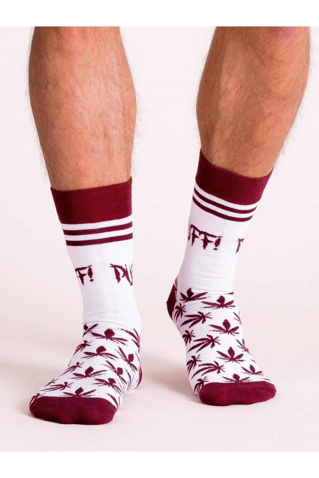 Pánske ponožky kód WS-SR-5222.52