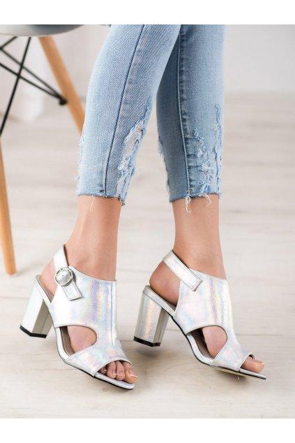 Sivé sandále na hrubom podpätku Goodin kod FL1506A-S