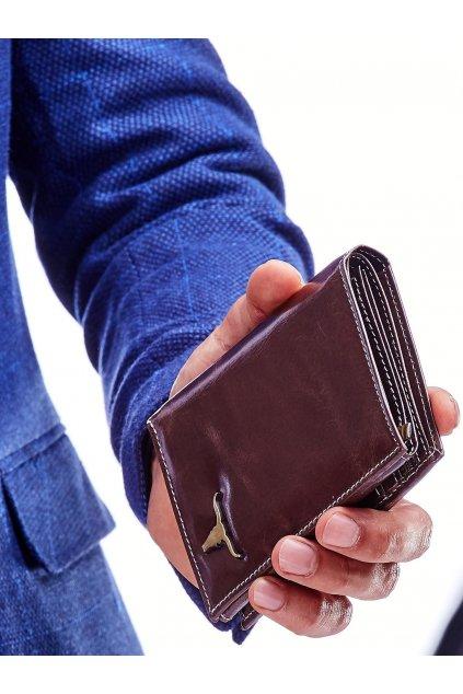 Pánska peňaženka kód CE-PR-RM-06-BAW2.36