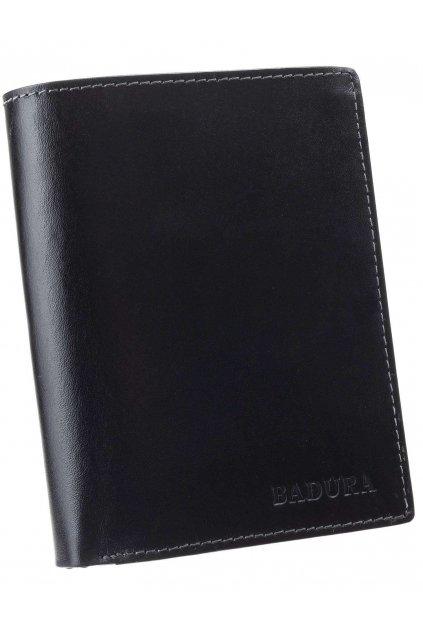 Pánska peňaženka kód N4-VT-NL
