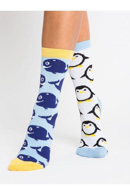 Dámske ponožky kód WS-SR-5542.08X