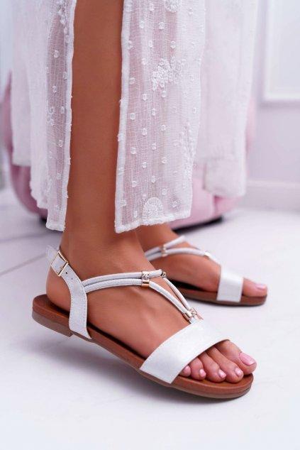 Dámske sandále s plochou podrážkou farba sivá kód obuvi 541-120 SILVER