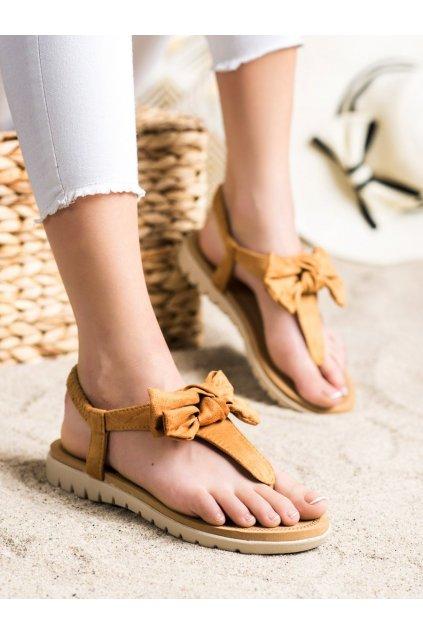 Hnedé dámske sandále Trendi kod 697C