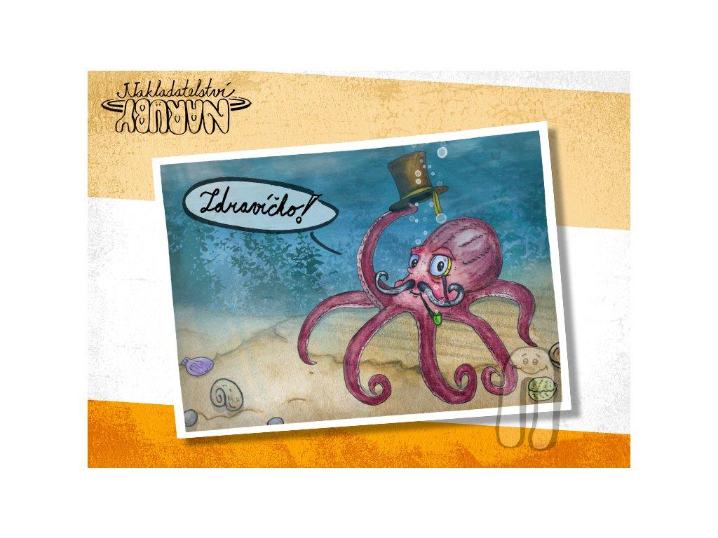 Prezentace pohlednic Chobotnice gentleman
