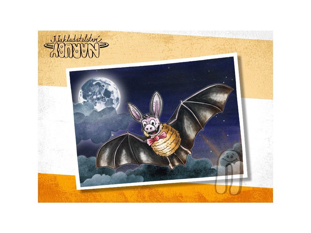 Prezentace pohlednic Netopýr