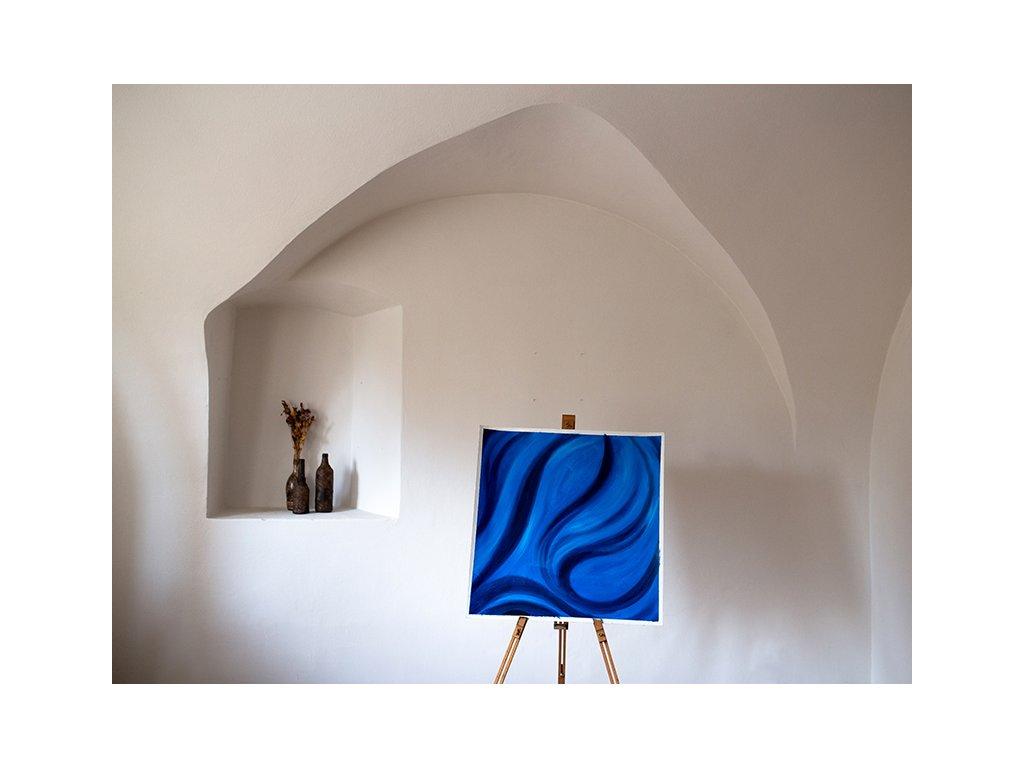 Modré vlnění P1190224 (2)