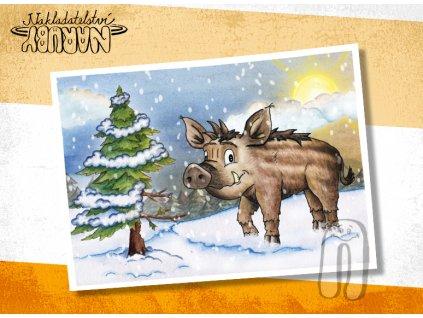 Prezentace pohlednic Prasátko