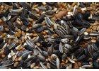 Směs semen BIO (semínka na klíčení)