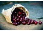 Lyofilizované višně (sušené mrazem)