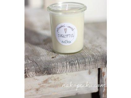 Přírodní svíčka Eukalyptus (160 ml)