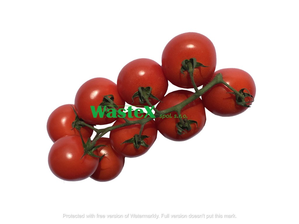 rajcata tomino
