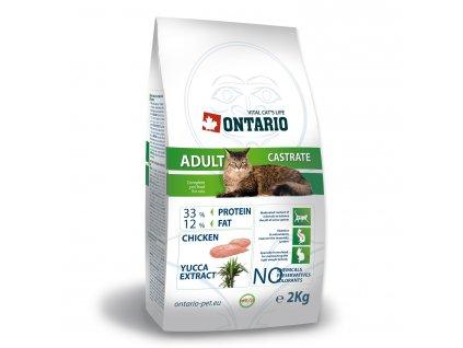 ONTARIO Cat Adult Castrate
