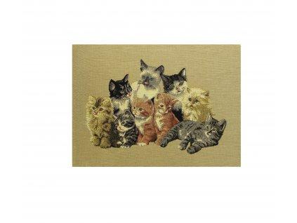 1594 dekoracni povlak na polstar kotatka velky