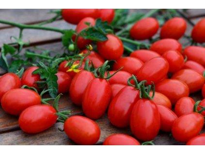 rajče datlové