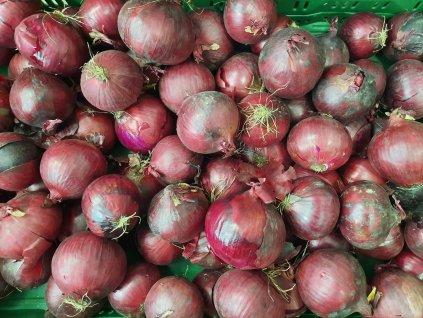 Cibule červená, 1 kg