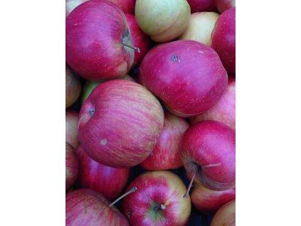 Jablka na štrůdl, 1 kg