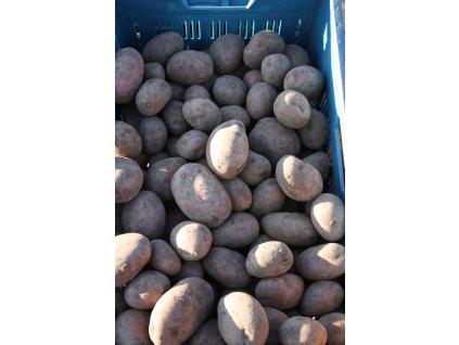 Brambory, varný typ AB, 2,5 nebo 5 kg