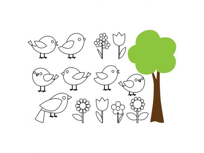 omalovánky - Ptačí svět
