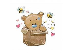 Méďa v krabici