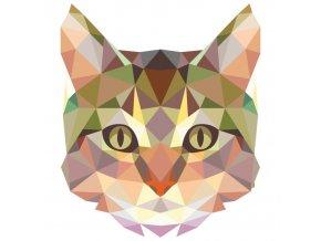 Kočka 4