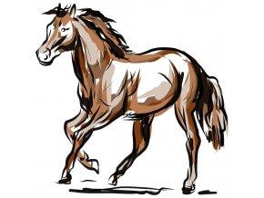 Kůň 3