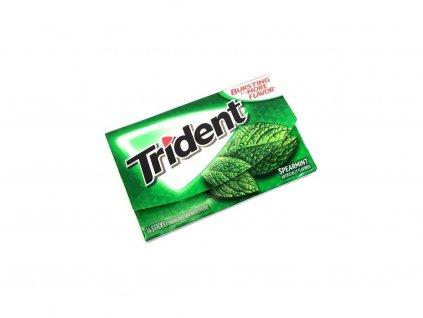 Trident Gum Spearmint 27g